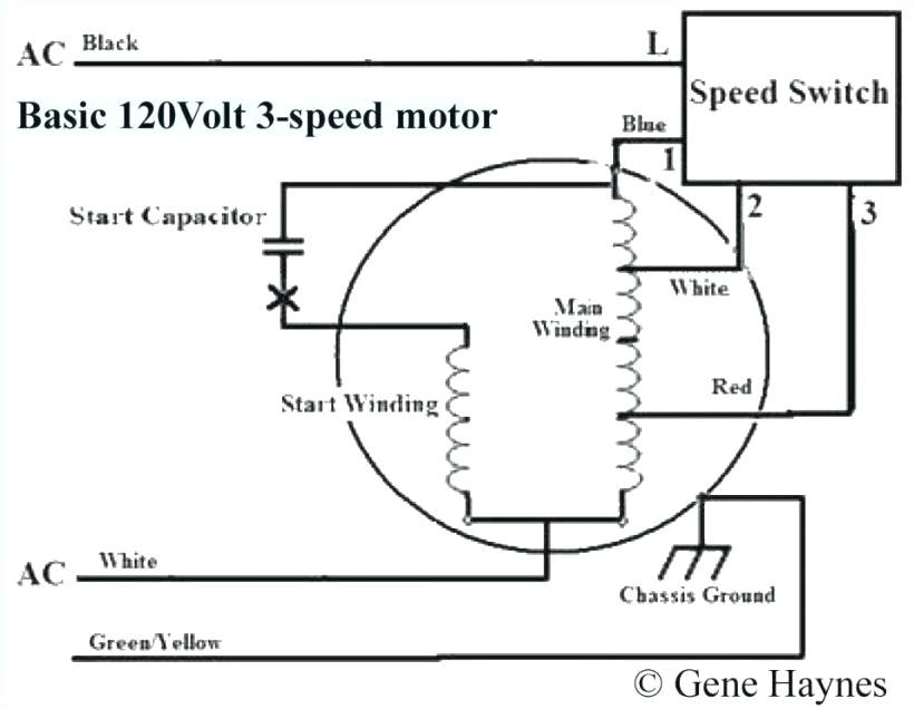 wiring diagram for a pedestal fan wiring library diagram expertswiring diagram for a pedestal fan wiring