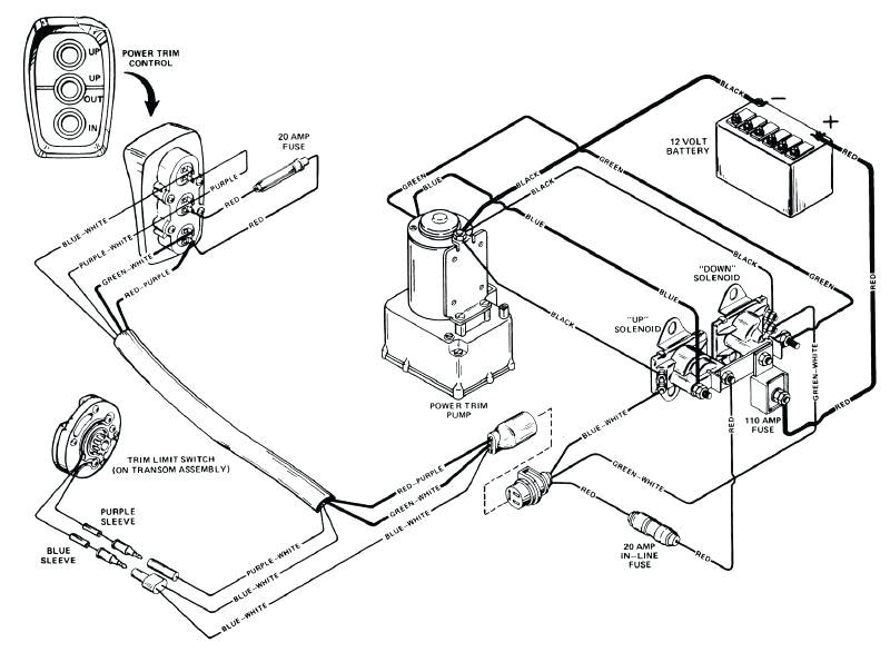 mercruir trim pump wiring diagram u2013 travelersunlimited club alpha