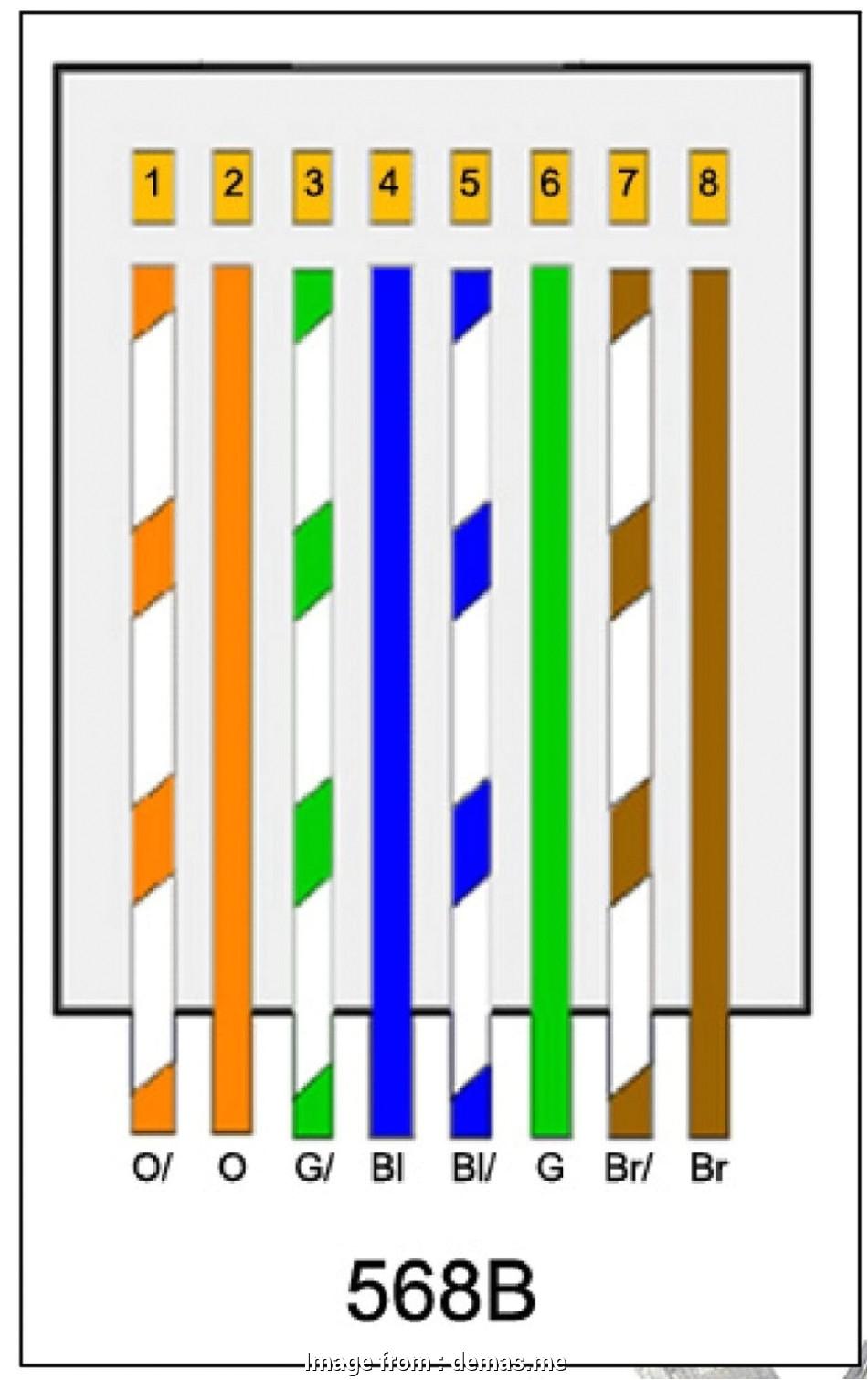 wiring diagram cat5 wiring diagram sort