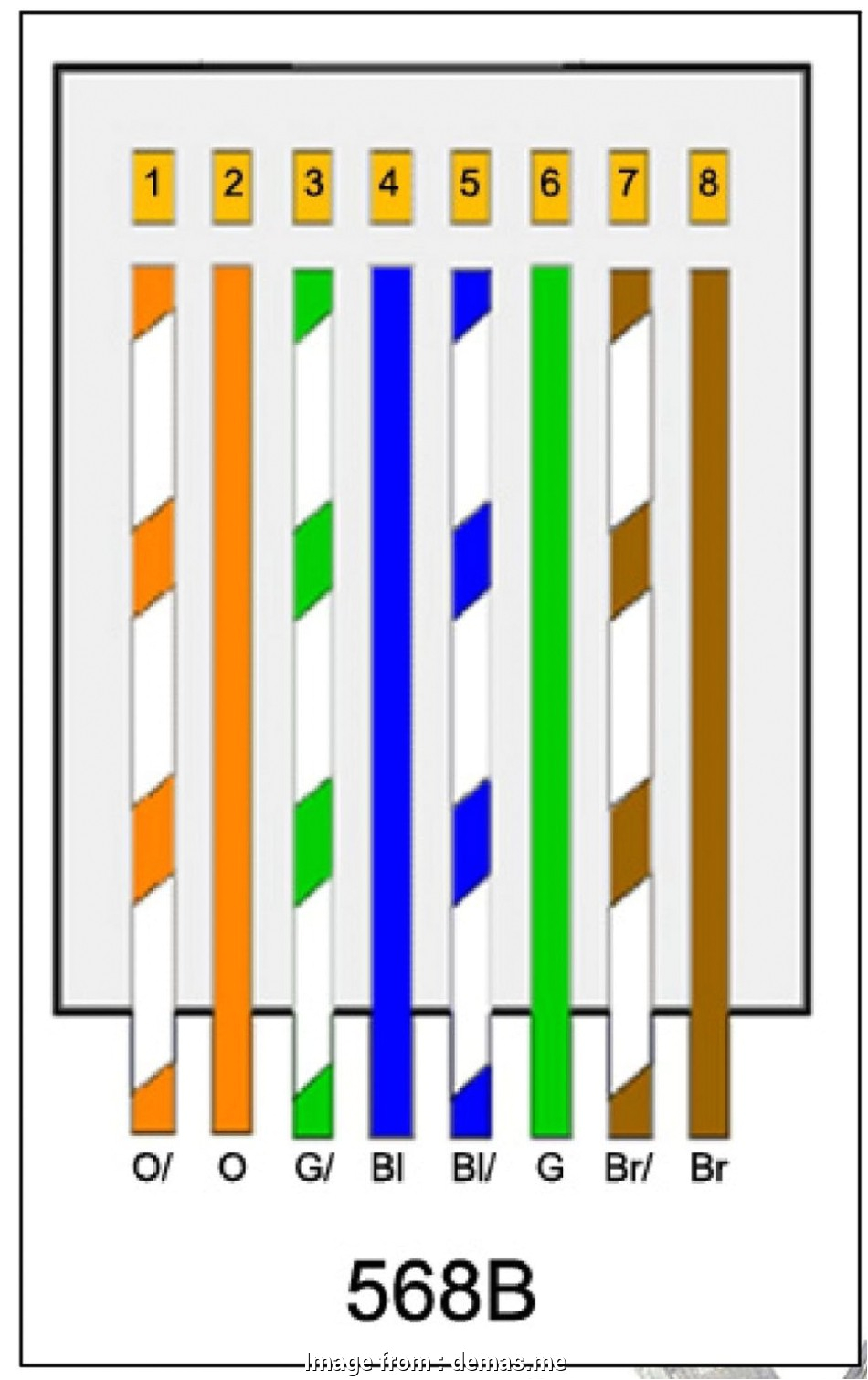 Cat5 Wiring Diagram Pdf Cat 5 Phone Wire Diagram Wiring Diagrams Recent