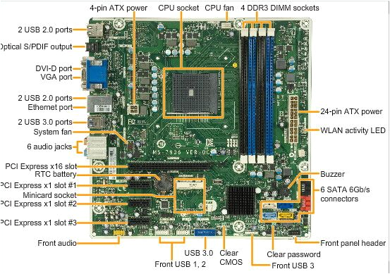 orchid s motherboard jpg