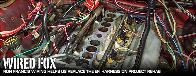 mustang efi wire harness schematic diagram database ford 5 8 efi wiring harness