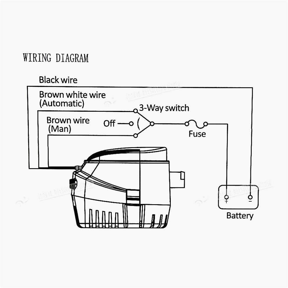 great xylem bilge float switch wiring diagram installing arresting automatic pump seaflo 3 rule 7