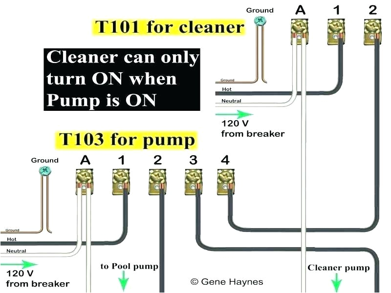 pool pump wiring schematic wire for how to timer and diagram free download pool pump wiring diagram