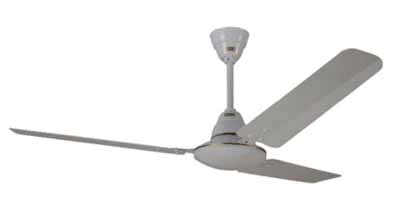 the beautiful pearl white fan comes with a 12 month manufacturer warranty it is available on snapdeal at reasonable prices hurry up and complete your