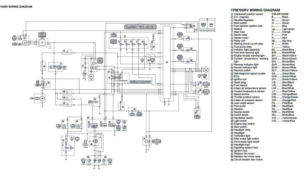 Yamaha Warrior 350 Wiring Diagram Wiring Diagram 89 Yamaha Warrior 350 Wiring Diagram Paper