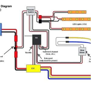 light bulb wire beautiful wiring diagram switch to two lights new peerless light switch wiring