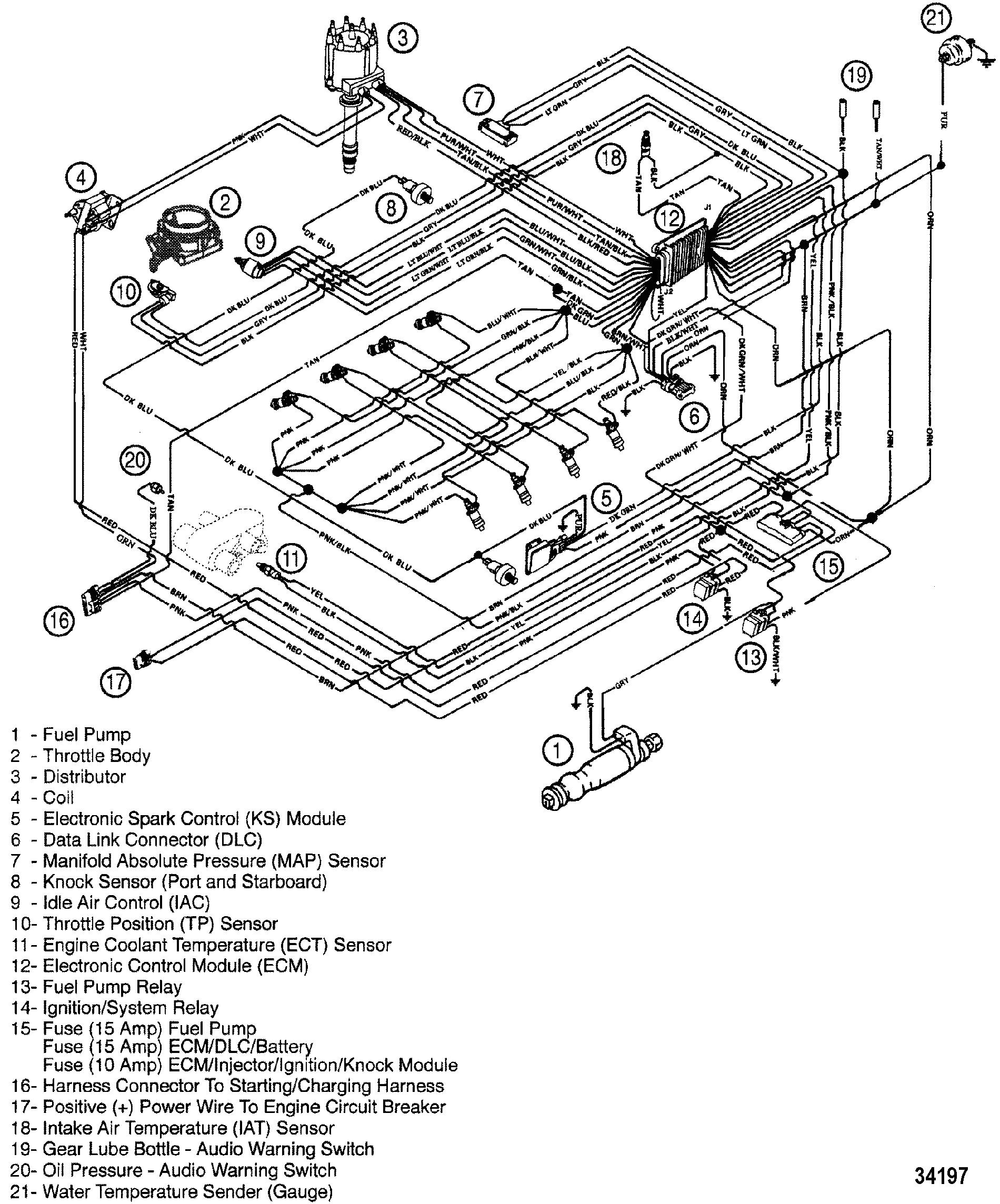 5 0 efi wiring harness wiring library 5 0 efi wiring harness