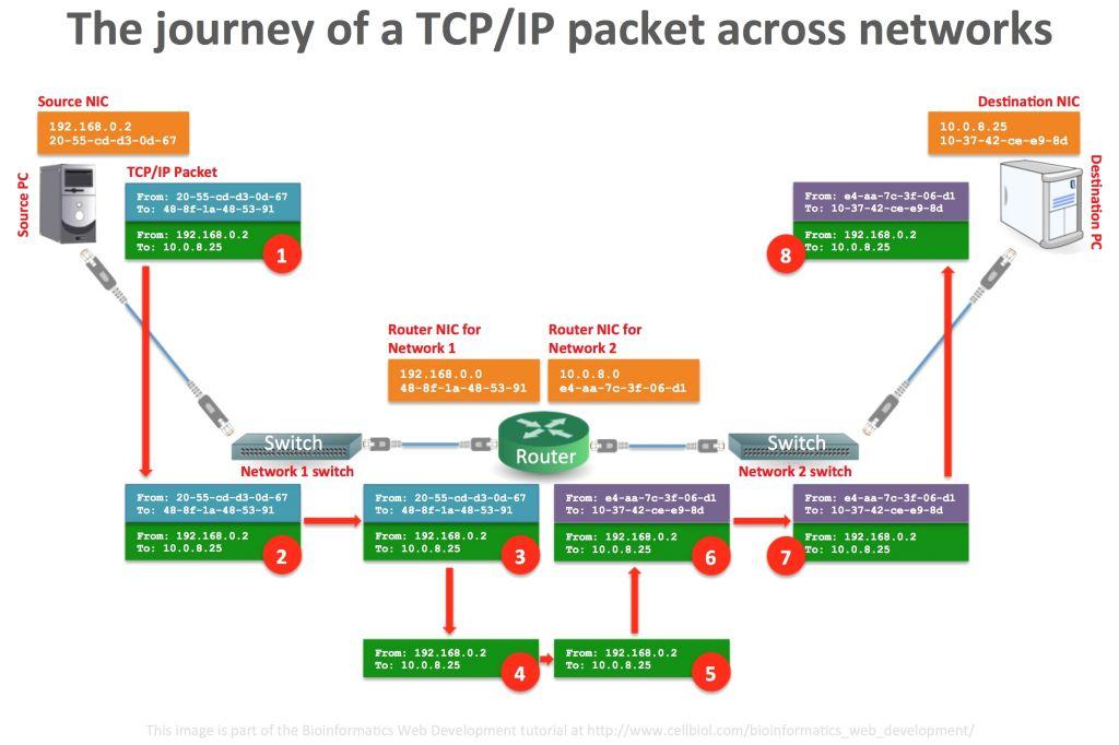 poe switch wiring diagram switch wiring diagram unique network switch diagram fresh web diagram 0d