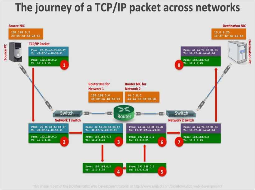 ethernet cable wiring diagram cat5e a wiring diagram unique network switch diagram fresh web diagram