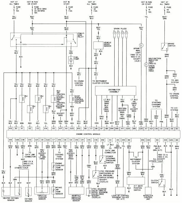 1993 Honda Accord Radio Wiring Diagram Honda Accord Wiring Blog Wiring Diagram