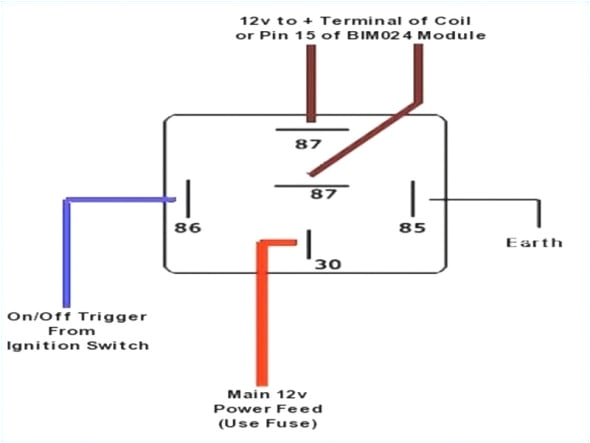 wiring diagram for a 5 post relay for wiring diagram for 5 pin bosch relay 0 jpg