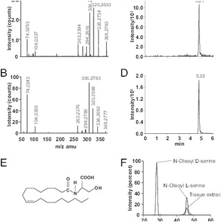 Bodine Eli S 100 Wiring Diagram Pdf Oleoyl Serine An Endogenous N Acyl Amide Modulates