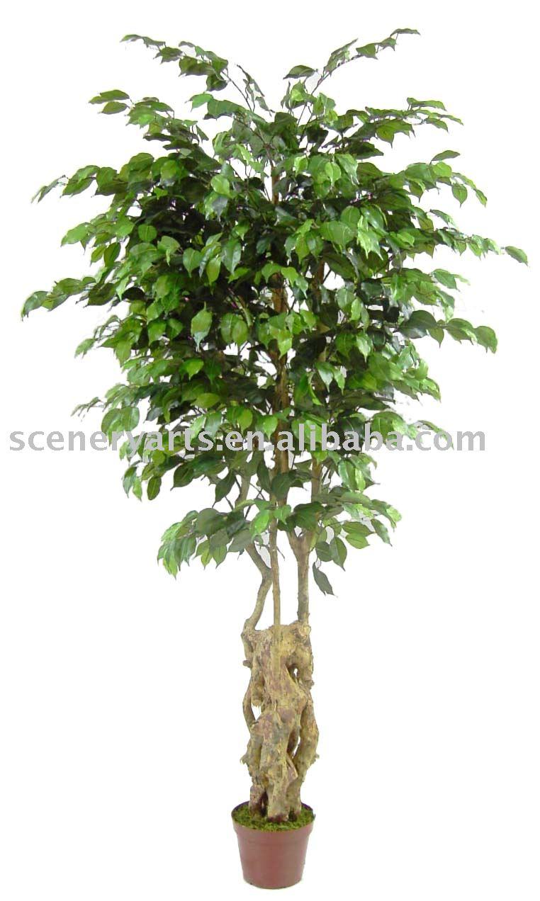 6 artificial shrub waved ficus tree x jpg