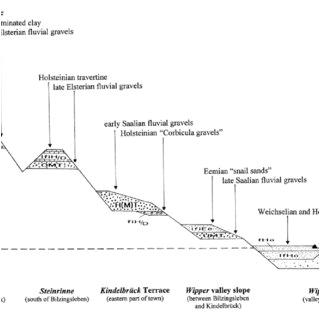 Edwards 270 Spo Wiring Diagram Pdf Ostrakoden Aus Der Mittelpleistozanen