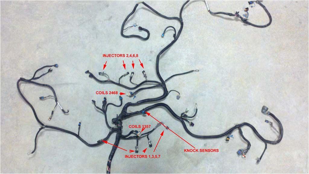 5 3 wiring harness standalone