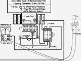100 Watt Metal Halide Ballast Wiring Diagram Metal Halide Ballast Wiring Diagram Wiring Diagram