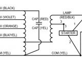 100 Watt Metal Halide Ballast Wiring Diagram Wiring Manual Pdf 100 Watt Metal Halide Wiring Diagram