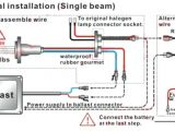 1000 Watt Ballast Wiring Diagram Hid Ballast Wiring Diagram 208v Mt My Wiring Diagram