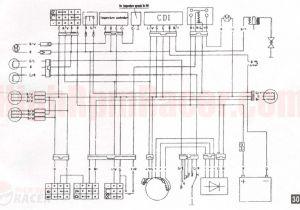 110cc Go Kart Wiring Diagram 110cc Chinese Quad Wiring Diagram New Taotao atv Best at