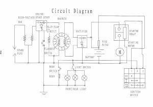 110cc Go Kart Wiring Diagram Roketum 110cc atv Wiring Schematic Complete Wiring Schemas