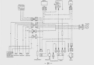 110cc Go Kart Wiring Diagram Taotao 110cc atv Wiring Diagram Wiring Diagram