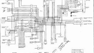 1985 Honda Spree Wiring Diagram Honda Spree Wiring Diagram Wiring Diagram and Schematic