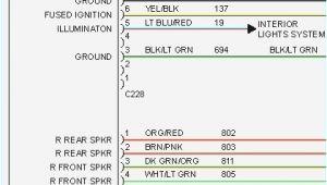 1993 ford Explorer Radio Wiring Diagram 93 Explorer Interior Light Wiring Diagram Auto Diagram Database