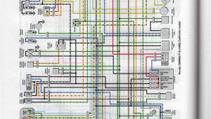 1997 Honda Cbr 600 F3 Wiring Diagram Looking for Wiring Diagram for My F3 R R and Stator Cbr