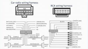 1998 Honda Prelude Stereo Wiring Diagram Pioneer Dvd Car Wiring Diagram Library Wiring Diagram