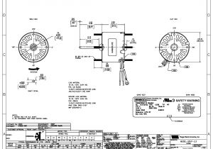 2 Speed Pump Wiring Diagram Century 2 Speed Motor Wiring Diagram Free Wiring Diagram