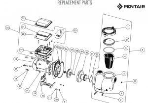 2 Speed Pump Wiring Diagram Pentair 2 Speed Pump Wiring Diagram Gallery