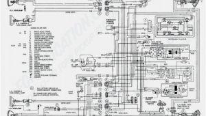 2000 ford Focus Spark Plug Wire Diagram 2000 ford Focus Spark Plug Wire Diagram