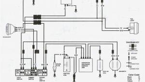 2001 Kawasaki Bayou 220 Wiring Diagram Bayou Wiring Schematic Wiring Diagram