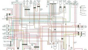 2001 Polaris Sportsman 500 Wiring Diagram Pdf Polaris Sportsman 800 Efi Wiring Diagram Blog Wiring Diagram