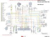 2002 Polaris Sportsman 500 Wiring Diagram 2008 Polaris Predator Wiring Diagram Fadli Ahok