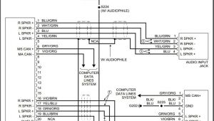 2004 ford Ranger Radio Wiring Diagram 2004 ford Ranger Wiring Harness Wiring Diagram sort