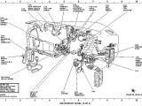 2005 ford Explorer Sport Trac Radio Wiring Diagram 2004 ford Explorer Sport Trac Engine Diagram Blog Wiring