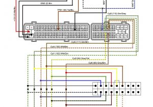 2006 toyota Camry Radio Wiring Diagram Rs 5893 Tailgate Parts Diagram Also 2007 toyota Tundra