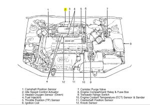 2012 Hyundai Elantra Wiring Diagram 2009 Hyundai Accent Engine Diagram Wiring Diagram Load