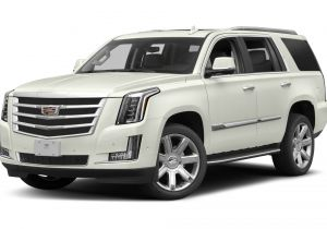 2015 Cadillac Escalade Msrp 2019 Cadillac Escalade Specs and Prices