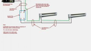 220 Volt Baseboard Heater thermostat Wiring Diagram Wiring Diagram for 220 Volt Baseboard Heater with Images