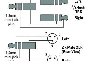 3.5 Mm Jack to Xlr Wiring Diagram 2 1 Xlr Wiring Diagram Wiring Diagram