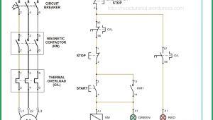 3 Phase Magnetic Starter Wiring Diagram 3 Phase Magnetic Starter Wiring Diagram for Your Needs
