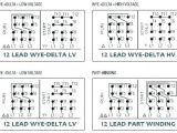 3 Phase Motor Wiring Diagram 12 Leads Wiring Diagram Star Delta Featured Y D Starter Motor Explained In