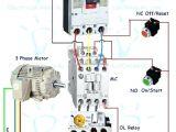 3 Phase Wiring Diagram Wiring Contactors Diagram Shelectrik Com