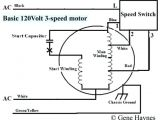 3 Speed Ceiling Fan Motor Wiring Diagram 3 Speed Motor Wiring Diagram Inspirational Single Phase 2 Speed