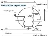 3 Speed Motor Wiring Diagram 3 Speed Wiring Diagram Wiring Diagram Info