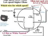 3 Speed Table Fan Motor Wiring Diagram Dm 2156 Three Speed Fan Motor Wiring Schematic Schematic Wiring