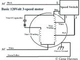 3 Speed Table Fan Wiring Diagram Ceiling Fan Capacitor 5 Wire 5 Wire Capacitor Quickguideme